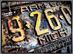 P1246413.JPG